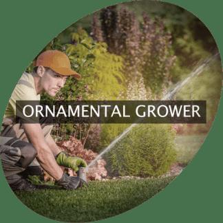 Ornamental Grower