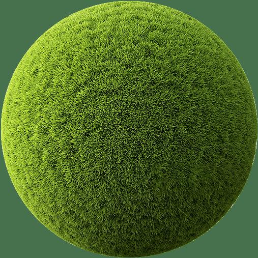 Perfect green grass, good green up