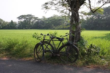 Da Delhi a Bhubaneswar via Bhopal. Miscellanea di scatti dall'India.