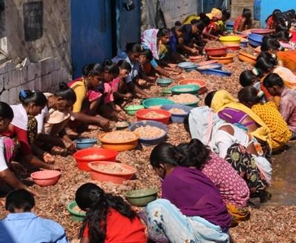 Le foto: al porto dei pescatori di Mumbai