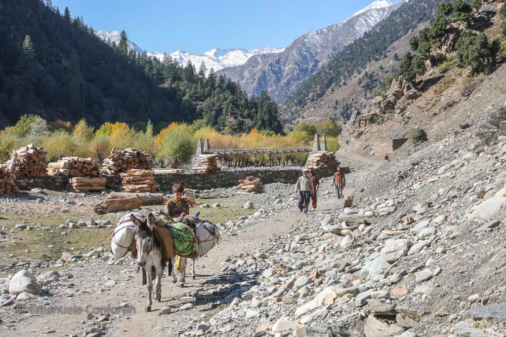 CHITRAL PAKISTAN (12)