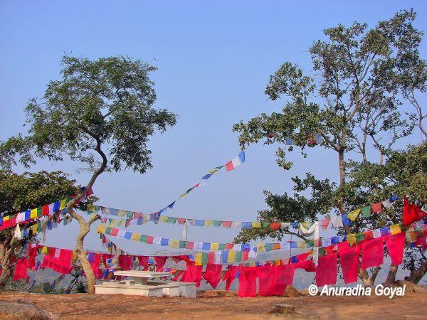 रंग बिरंगी बोद्ध पताकाएं - राजगीर, बिहार