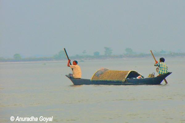 ब्रह्मपुत्र नदी पे एक पारंपरिक नाव - माजुली