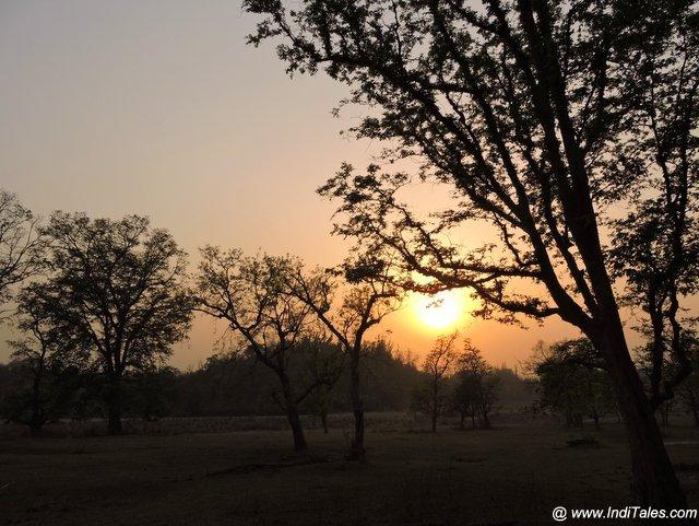 राजाजी राष्ट्रीय उद्यान में सूर्यास्त का मनोरन दृश्य