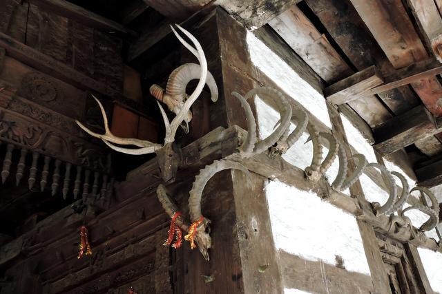 मंदिर के इर्द गिर्द सींघ