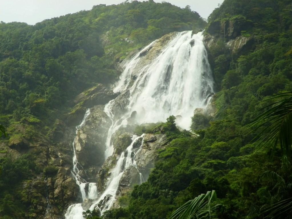 Mesmerizing Dudhsagar waterfall