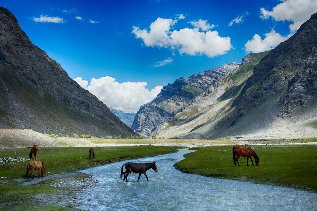 Ladakh-Landscape