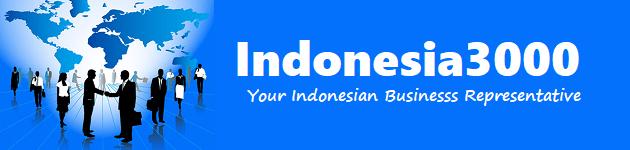 Indonesia Representation Services l Indonesia3000.com
