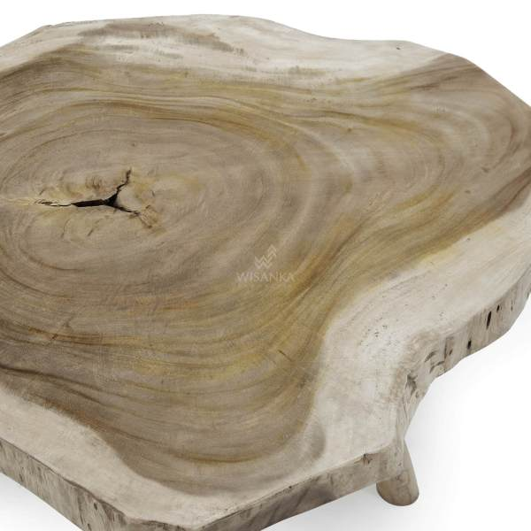 Tiro Coffee Table (1)