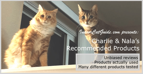 best cat products