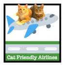 flying with a cat in cabin