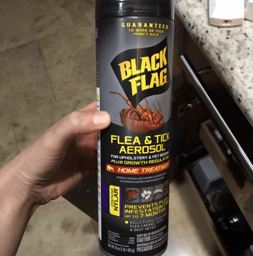 how to get rid of fleas on cats fast - raid flea killer spray