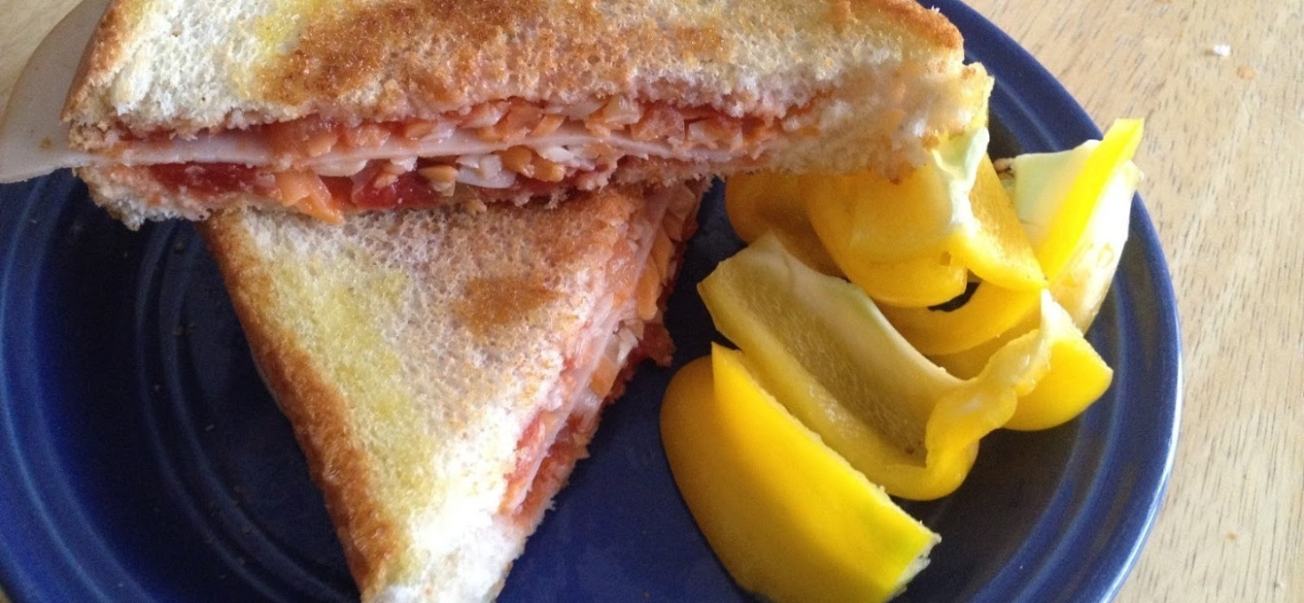 Turkey and Salsa Sandwich