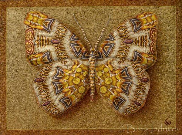 submarina_symbol_butterfly_11