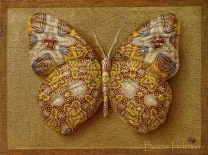 submarina_symbol_butterfly_5