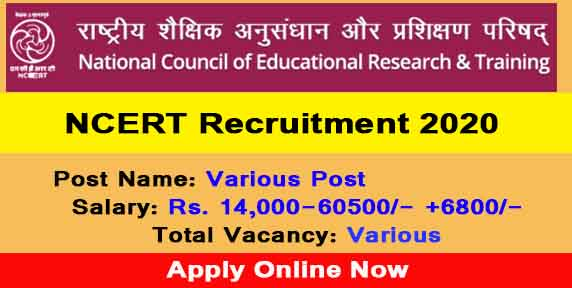 NCERT Recruitment 2021: Apply for various posts CIET, check last date and other details