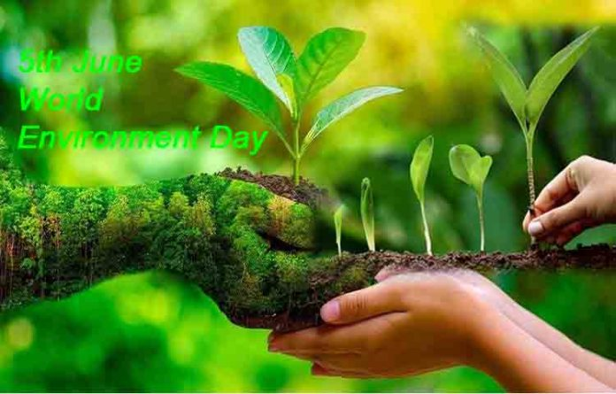 World Environment Day Nature 2021; Wishes, Theme, History And Sicnificance