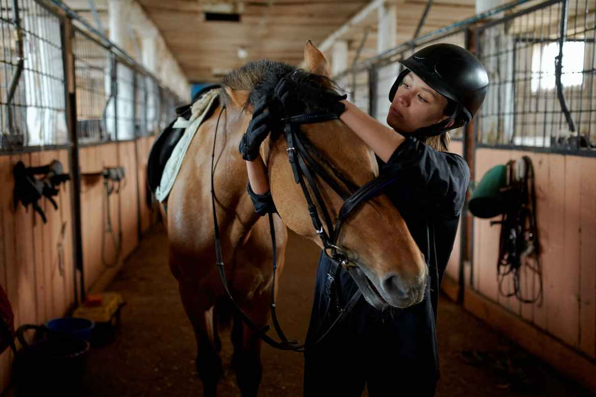 young female jockey tying bridle of obedient horse in barn