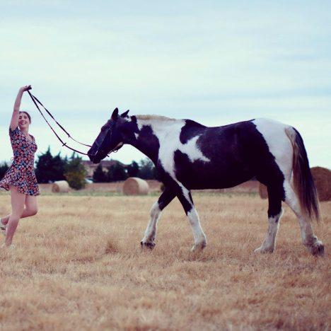 The International Equestrian Virtual Clinic!