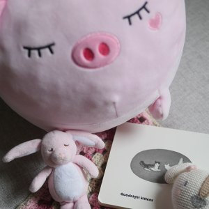 Sleepy baby animal toys on a blanket with a bedtime book.