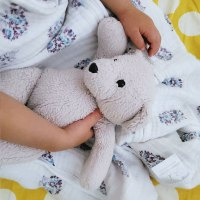 Baby taking a nap in bed with a stuffie.