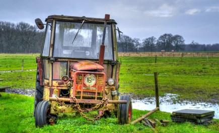 Der Deutsche Bauernverband (DBV) und der Digitalverband Bitkom sehen Aufholbedarf bei der digitalen Infrastruktur im ländlichen Raum.