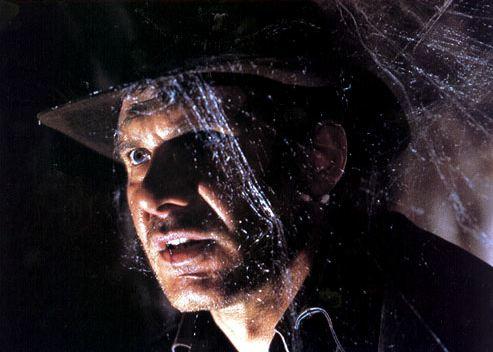 Indiana Jones covered in cobwebs
