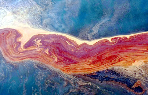 BP Oil Spill Aftermath