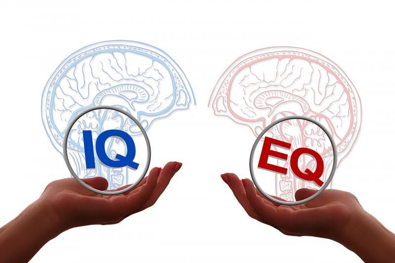 IQ ve EQ zeka duygusal zeka Pixabay.jpg