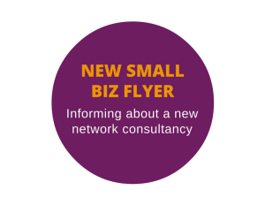 Flyer for a network consultant