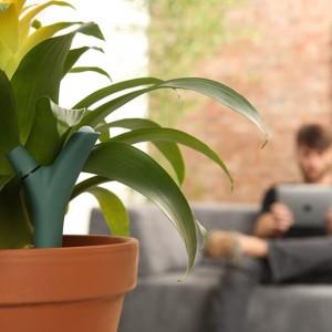 Wireless Bluetooth Smart Plant Sensor Offer