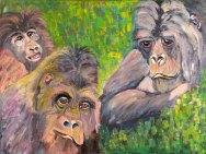 Gorillas in the Mist~Uganda