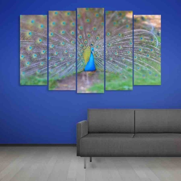 Multiple Frames Peacock Wall Painting (150cm X 76cm)