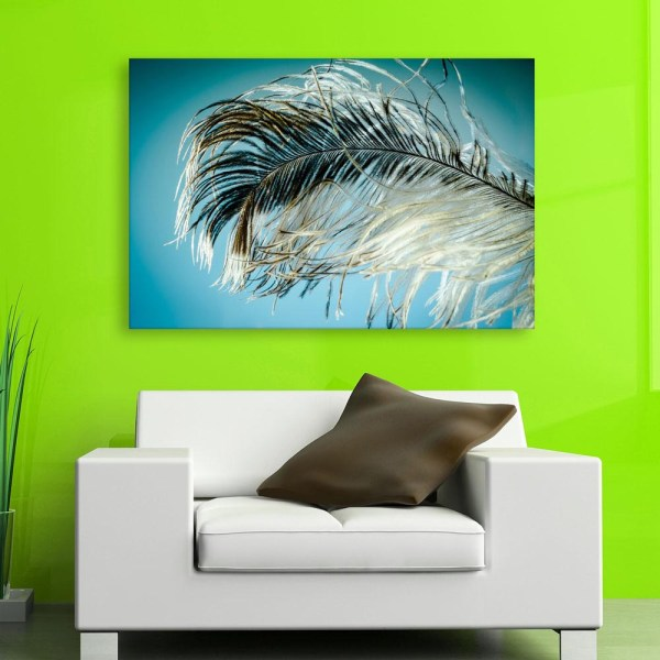 Canvas Painting - Beautiful Peacock Feather Art Wall Painting for Living Room