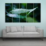 Multiple Frames Beautiful Leaf Wall Painting for Living Room