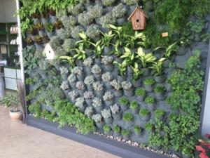 giardino-verticale-orto-casa-inerteco