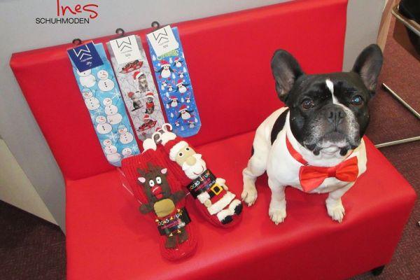 Gustav Günter präsentiert die neuen Weihnachtssocken für Damen und Herren!