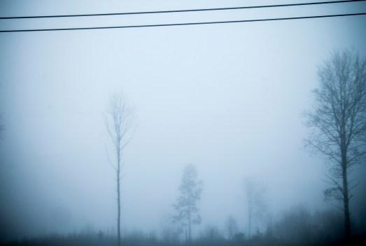 vinterlandskap_7569_1