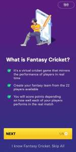 what is fantasy cricket