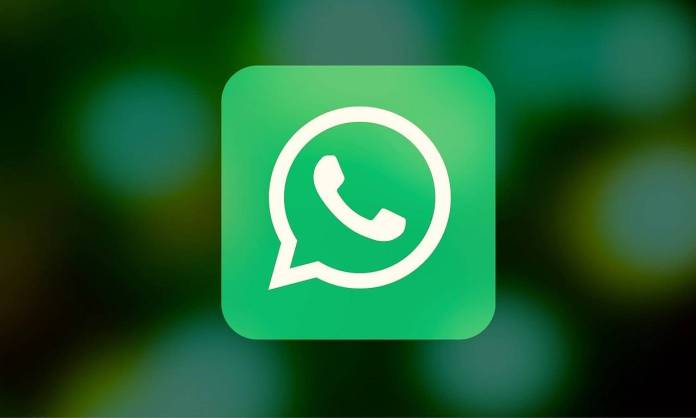 WhatsApp contact