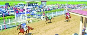 Horse Racing Action Eariler this Year