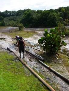 Trail rehabilitation underway