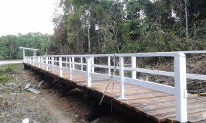 The 100 -foot bridge at Batavia, Region Seven