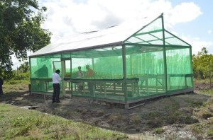 One of the green houses under the Canals Polder green Initiative