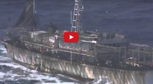 """his screen grab of a Monday, March 14, 2016 video released by Argentina's navy, or """"Prefectura Naval Argentina"""""""