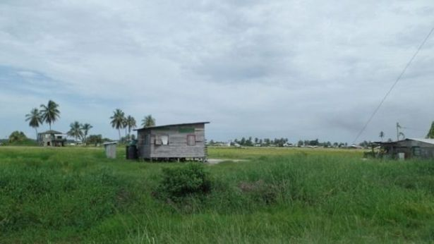Suicide is particularly prevalent in Guyana's rural agricultural communities like Zorg-En-Vlygt (BBC photo)