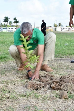 President David Granger, early this morning, visited the People's National Congress Headquarters, Sophia, to plant a tree, as the country observes National Tree Day