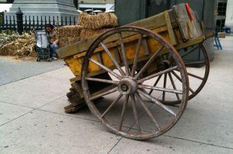 L'Autunno arriva a Madison Square Park