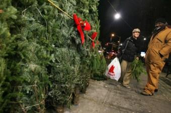 Comprare L'Albero di Natale a New York