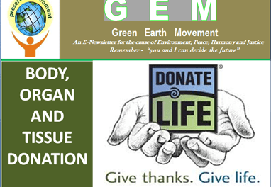 Gem ppt-16-give thanks, give life